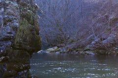 Grande fiume profondo nel legno del parco di Great Smoky Mountains Immagini Stock Libere da Diritti