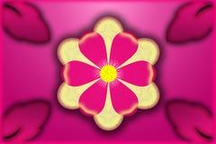 Grande fleur avec les pétales roses et jaunes Images libres de droits