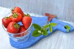 Grande, fragola casalinga in piatto trasparente e fiore sbocciante sul bordo blu Immagini Stock