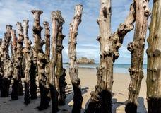 """Grande frangiflutti, 3000 tronchi per difendere la città dalle maree, flocculo de l """"spiaggia del ventail del ‰ di à in Saint Mal immagini stock"""
