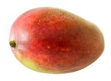 Grande frutta del mango su fondo bianco fotografia stock libera da diritti