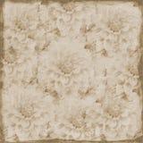 Grande fundo floral do sepia sujo Imagem de Stock
