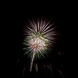 Grande fuoco d'artificio professionale variopinto Immagine Stock