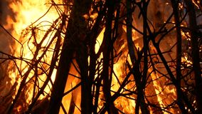Grande fuoco di accampamento al buio stock footage