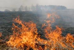 Grande fuoco nel campo di erba asciutta immagini stock libere da diritti