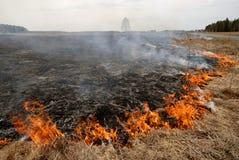 Grande fuoco nel campo di erba asciutta. Fotografie Stock