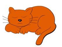 Grande gatto Fotografie Stock