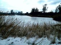 Grande ghiaccio nella mia città Fotografia Stock