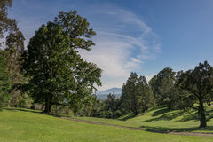 Grande giardino naturale Fotografie Stock Libere da Diritti