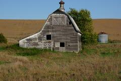 Grande granaio bianco che si siede lungo il lato un campo di grano Immagine Stock Libera da Diritti