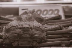 Grande granchio che è venduto al mercato ittico di Tsukiji a Tokyo Giappone fotografia stock libera da diritti
