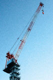 Grande grue Images stock