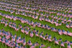 Grande grupo de bandeiras americanas em um gramado fotos de stock royalty free