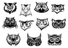 Grande grupo de cabeças preto e branco da coruja Fotografia de Stock