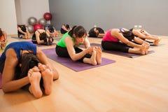 Grande grupo de pessoas que faz a ioga Fotos de Stock Royalty Free