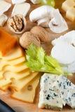 Grande gruppo di formaggi Fotografia Stock