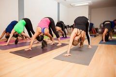 Grande gruppo di persone in uno studio di yoga Immagine Stock