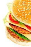 Grande hamburger Fotografie Stock