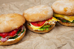 Grande hamburger Immagine Stock Libera da Diritti