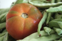 Grande harmonia de tomates vermelhos e de feijões verdes foto de stock