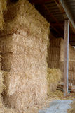 Grande Hay Bales Stacked Foto de Stock Royalty Free