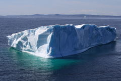 Grande iceberg nella baia dell'oca Fotografia Stock