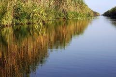 Grande ideia de uma canaleta pequena do delta de Danúbio Foto de Stock
