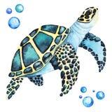 Grande illustration d'aquarelle de Handdrawing de tortue de mer une haute résolution illustration stock