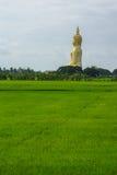 Grande immagine del Buddha Immagini Stock