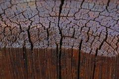 Grande immagine piacevole di struttura di legno lucidata fotografia stock