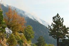 Grande incendio violento in montagna Fotografia Stock Libera da Diritti