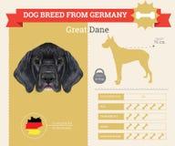 Grande infographics della razza di Dane Dog Fotografie Stock