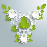 Grande ingranaggio di Eco con le foglie verdi 3 opzioni PiAd Fotografia Stock