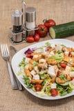 Grande insalata con il pollo Fotografia Stock Libera da Diritti