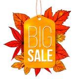 Grande insegna di vendita con le foglie di autunno e l'etichetta gialla Immagine Stock