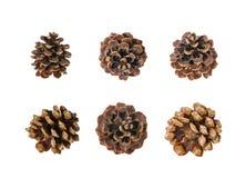 Grande insieme dei coni isolati su bianco Fotografia Stock Libera da Diritti