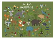 Grande insieme dei illustraitions disegnati a mano della foresta con gli animali del fumetto di colore illustrazione di stock