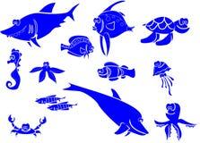 Grande insieme dei pesci di mare Fotografia Stock