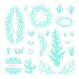Grande insieme dei ramoscelli e dei rami disegnati a mano di vettore con le foglie Illustrazione Vettoriale