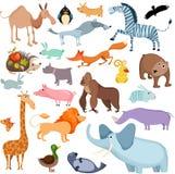 Grande insieme dell'animale Fotografia Stock