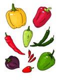 Grande insieme di vettore con differenti varietà di pepe royalty illustrazione gratis