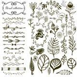 Grande insieme floreale disegnato a mano con i fiori selvaggi Fotografia Stock Libera da Diritti