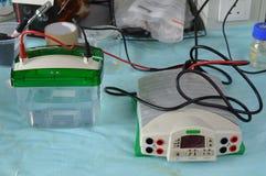 Grande installation d'électrophorèse Photos libres de droits