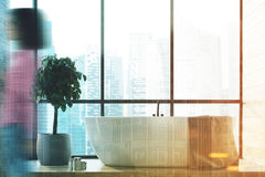 Grande interno del bagno della finestra, albero, ragazza Fotografia Stock Libera da Diritti