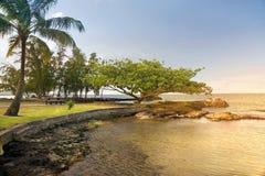 Grande isola, Hawai fotografia stock libera da diritti
