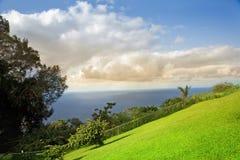 Grande isola, Hawai Immagini Stock