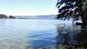 Grande lago Fotografia de Stock