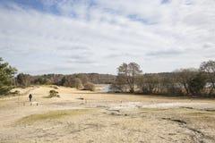 Grande lagoa de Frensham, terra comum de Frensham, Waverley, Surrey Foto de Stock