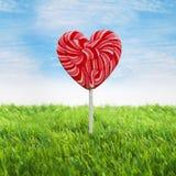Grande lecca-lecca del cuore Immagine Stock