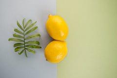 Grande limone giallo maturo due e foglia verde su una pasta blu-verde Immagini Stock Libere da Diritti
